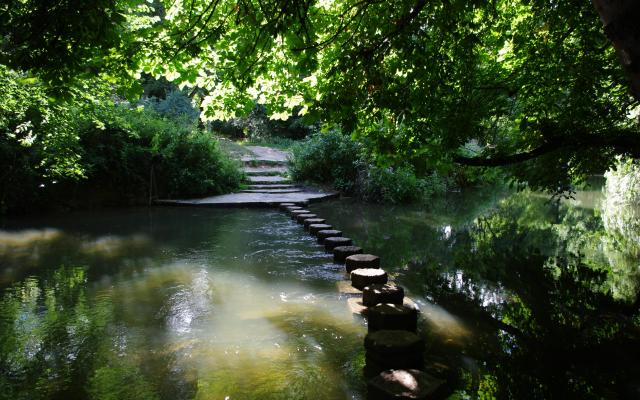 Stepping stones, Box Hill, Surrey