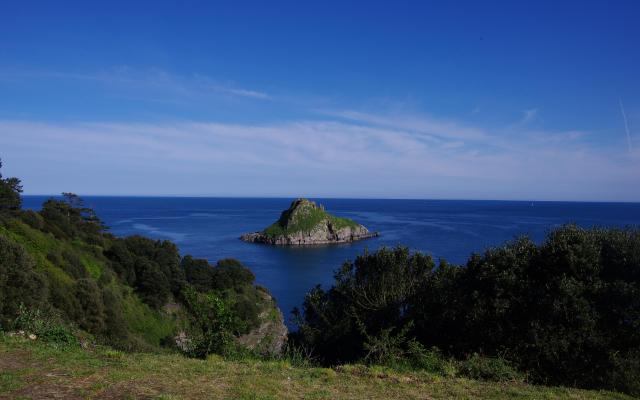 Thatcher Rock, Torquay, Devon